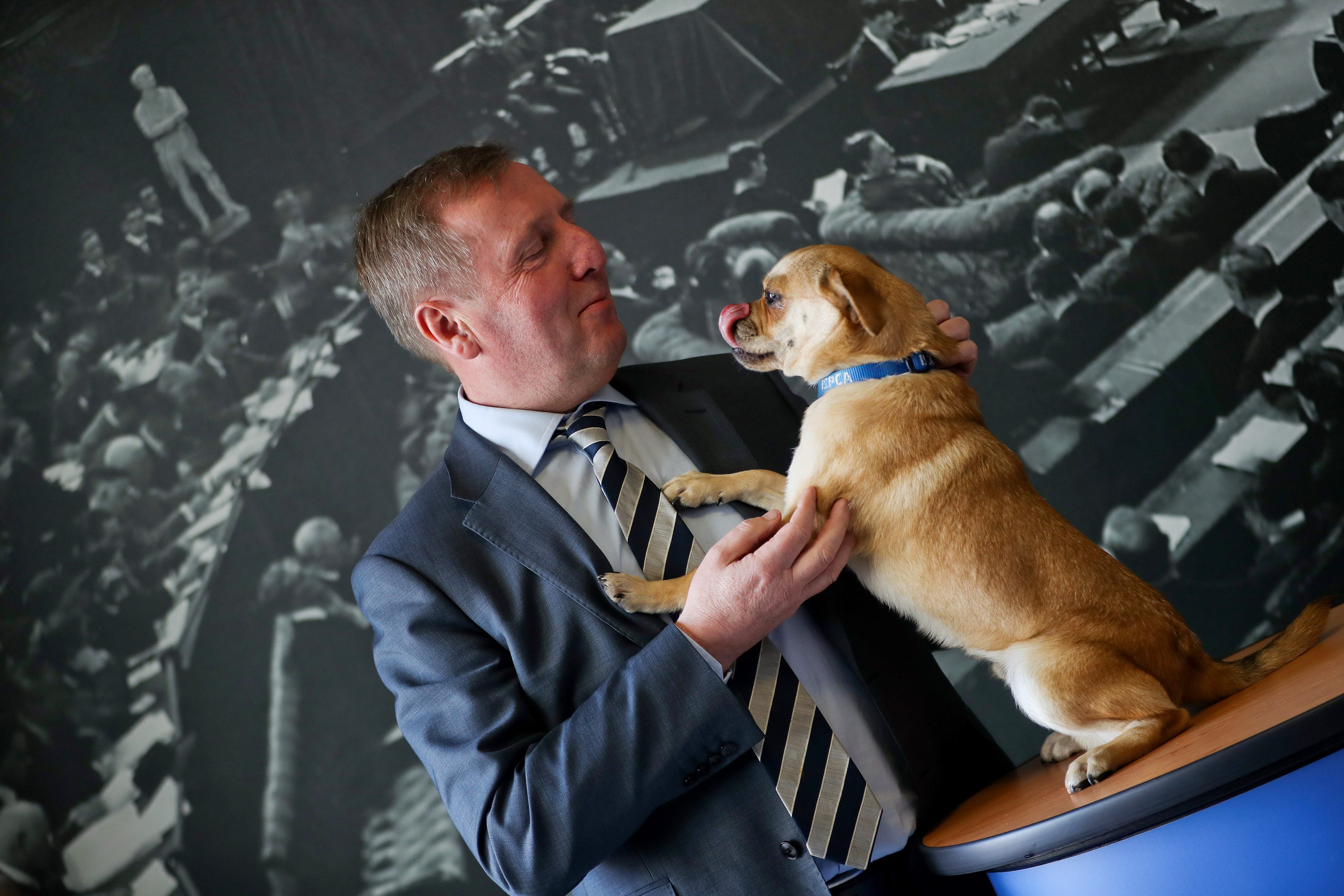 Minister Creed Announces Funding of €2,751,000 to Animal Welfare Organisations